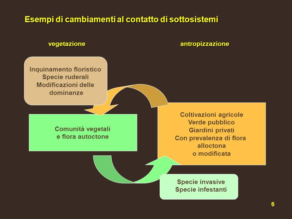 Inquinamento floristico Coltivazioni agricole Con prevalenza di flora