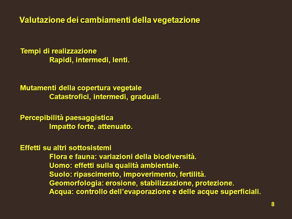 Valutazione dei cambiamenti della vegetazione