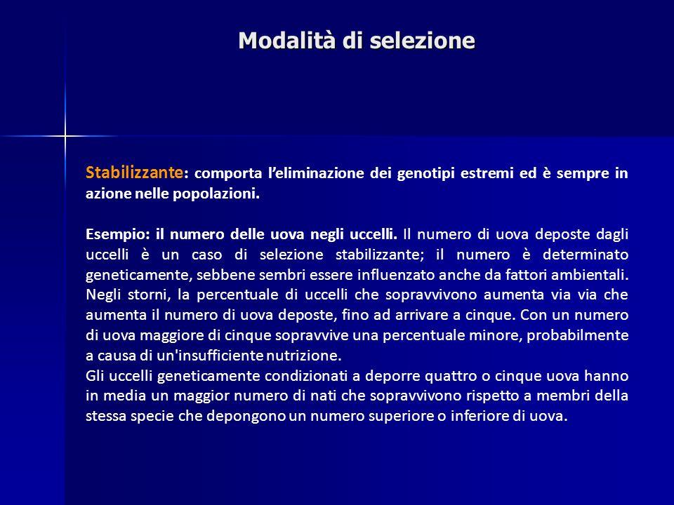 Modalità di selezione Stabilizzante: comporta l'eliminazione dei genotipi estremi ed è sempre in azione nelle popolazioni.