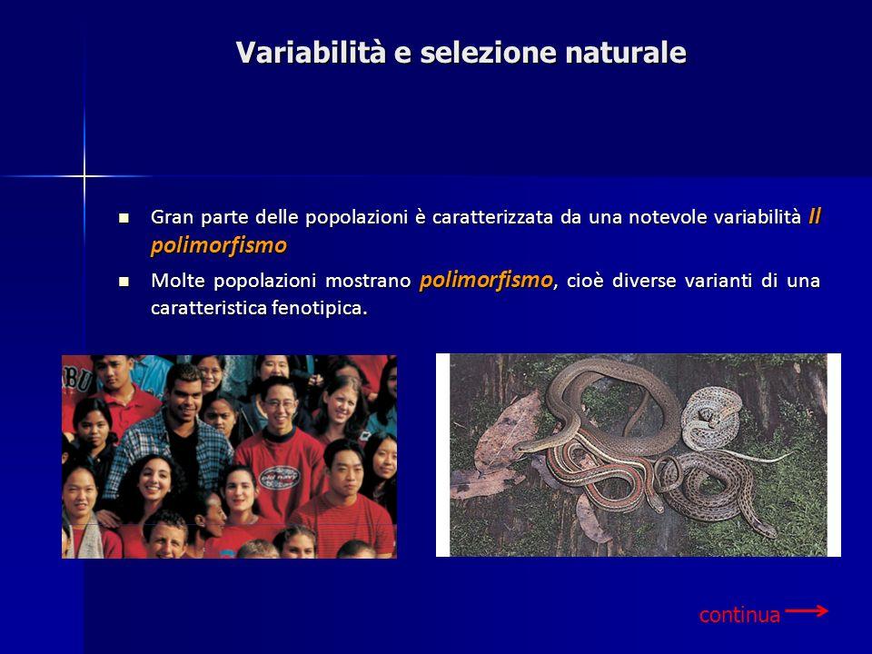 Variabilità e selezione naturale