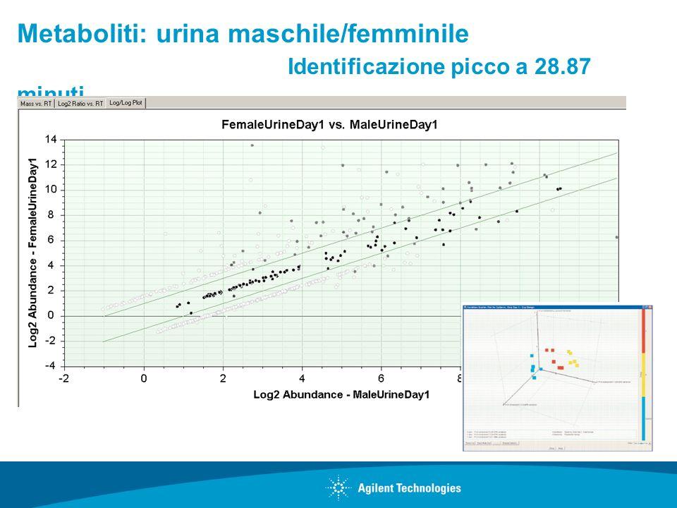 Metaboliti: urina maschile/femminile. Identificazione picco a 28