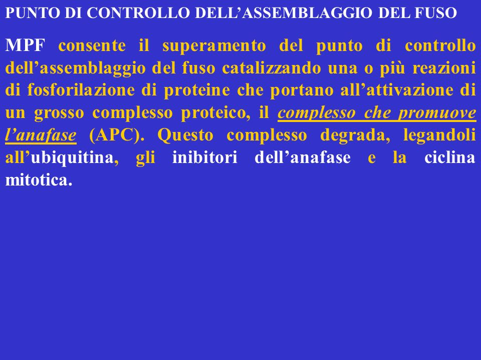 PUNTO DI CONTROLLO DELL'ASSEMBLAGGIO DEL FUSO