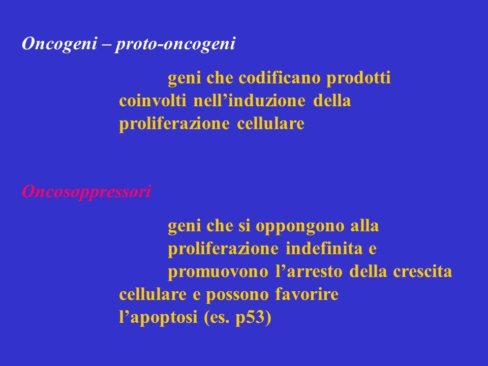 Oncogeni – proto-oncogeni