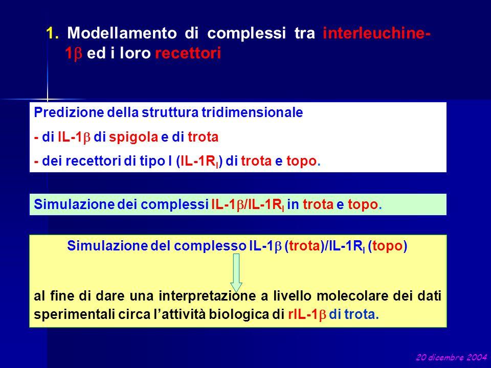 Simulazione del complesso IL-1b (trota)/IL-1RI (topo)