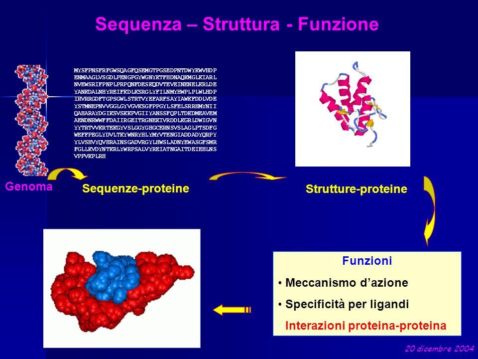 Sequenza – Struttura - Funzione