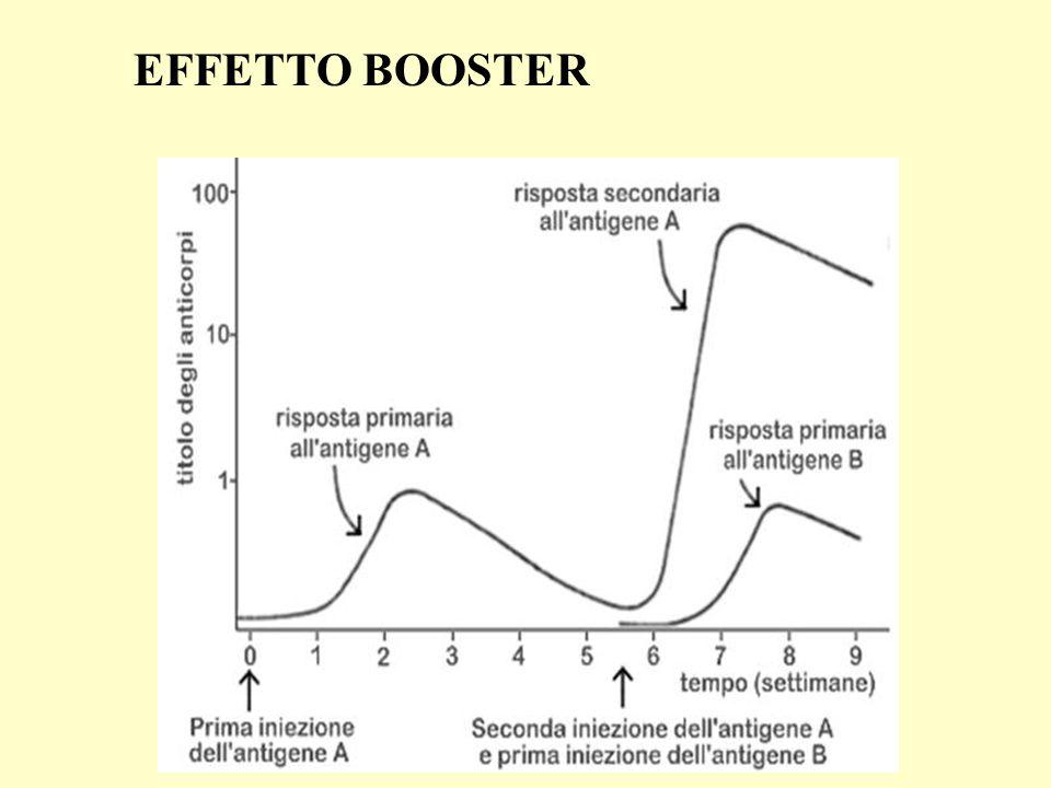 EFFETTO BOOSTER