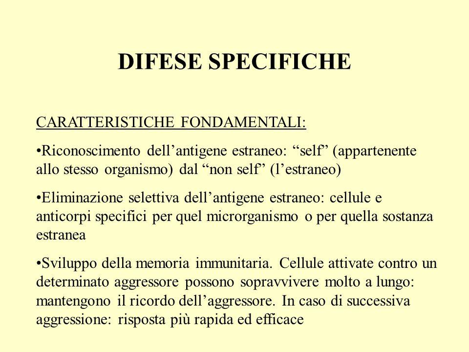 DIFESE SPECIFICHE CARATTERISTICHE FONDAMENTALI: