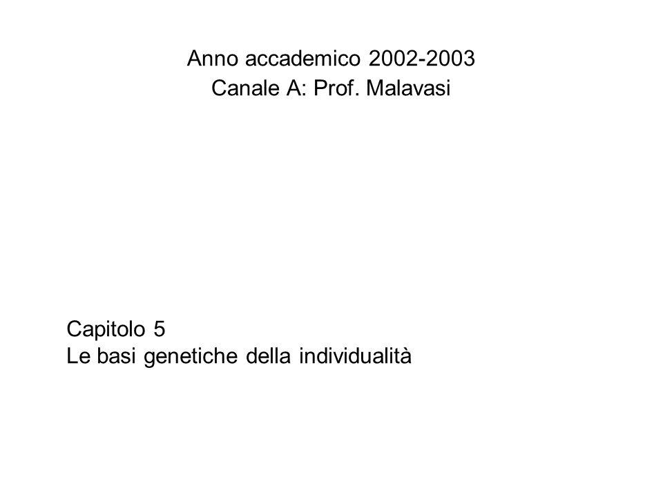 Canale A: Prof. Malavasi