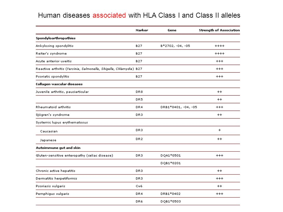 Human diseases associated with HLA Class I and Class II alleles