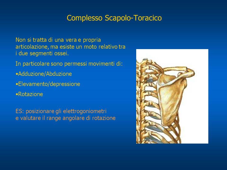 Complesso Scapolo-Toracico