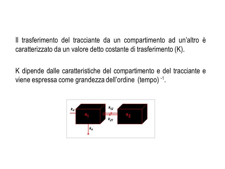 Il trasferimento del tracciante da un compartimento ad un'altro è caratterizzato da un valore detto costante di trasferimento (K).
