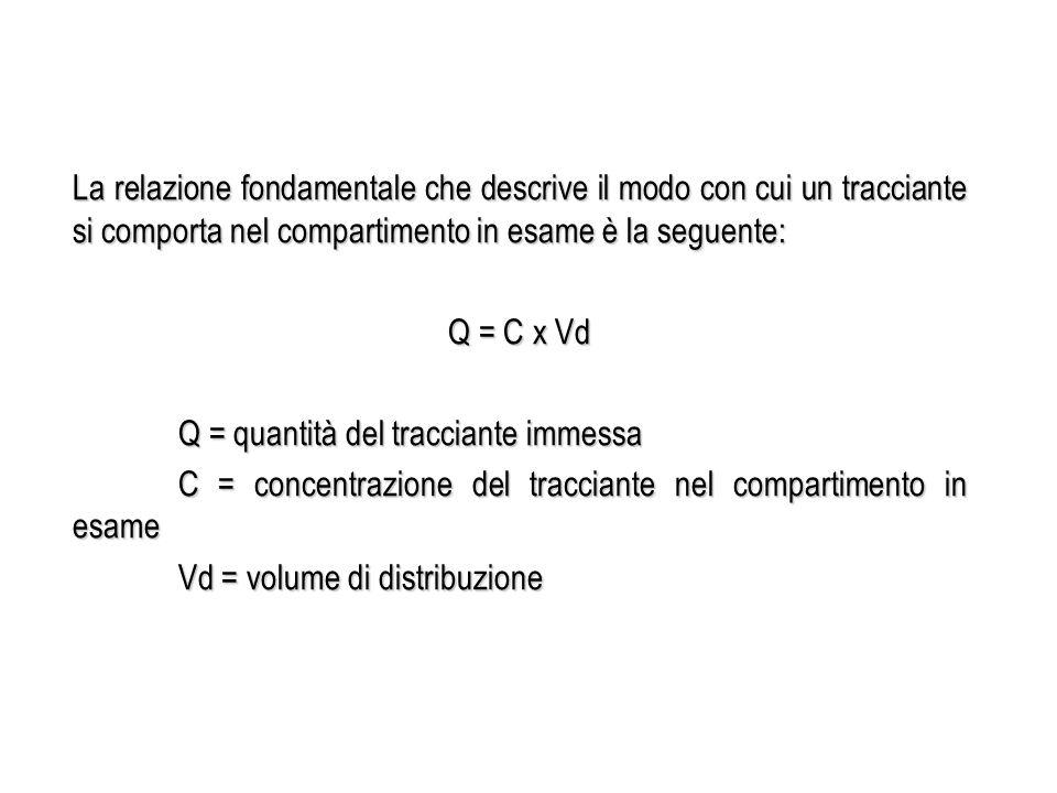 La relazione fondamentale che descrive il modo con cui un tracciante si comporta nel compartimento in esame è la seguente: