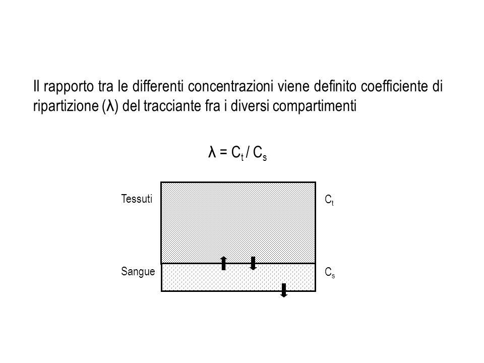 Il rapporto tra le differenti concentrazioni viene definito coefficiente di ripartizione (λ) del tracciante fra i diversi compartimenti