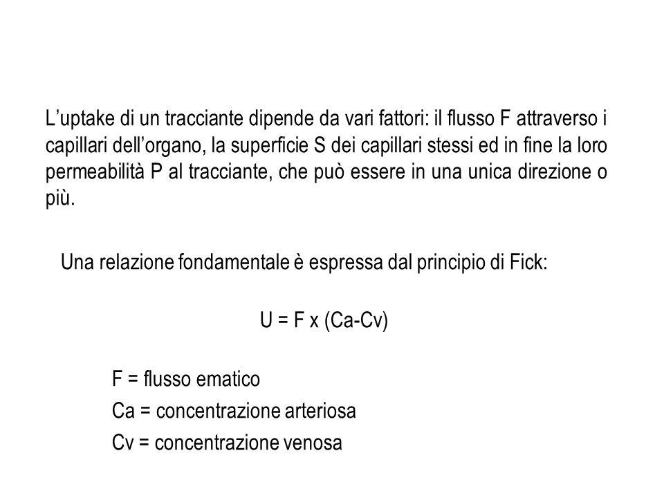L'uptake di un tracciante dipende da vari fattori: il flusso F attraverso i capillari dell'organo, la superficie S dei capillari stessi ed in fine la loro permeabilità P al tracciante, che può essere in una unica direzione o più.