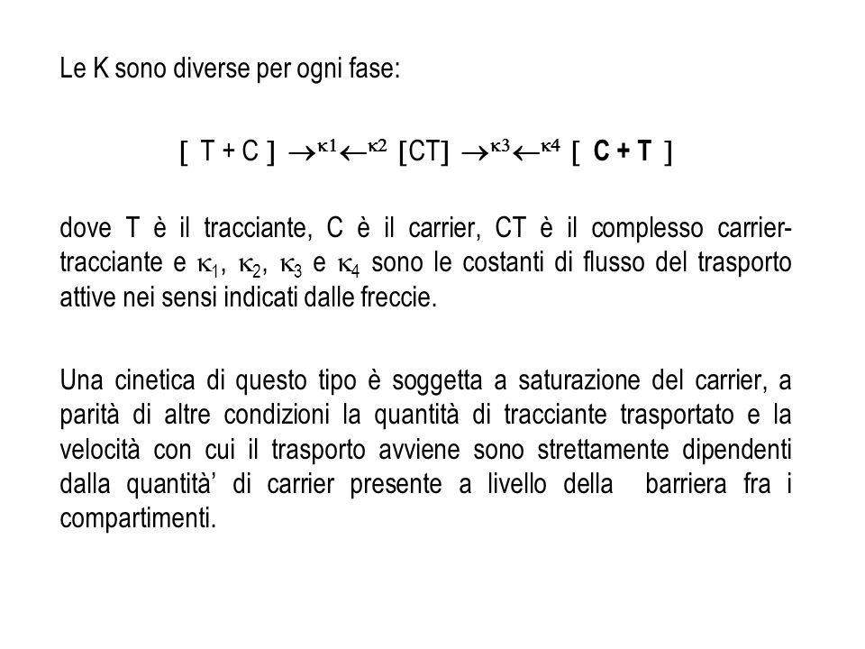  T + C   CT   C + T 