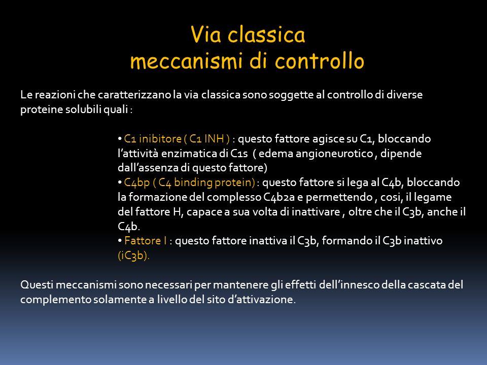 meccanismi di controllo