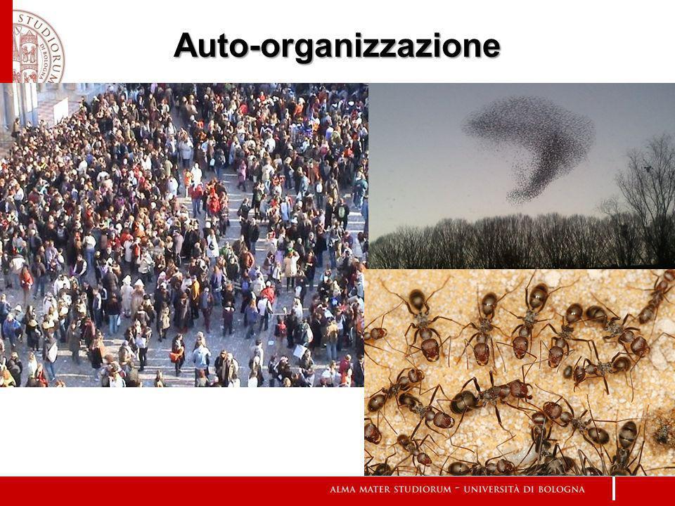 Auto-organizzazione