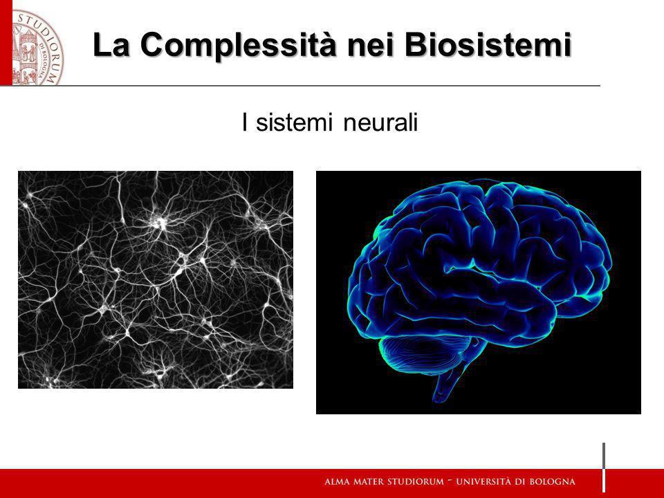 La Complessità nei Biosistemi