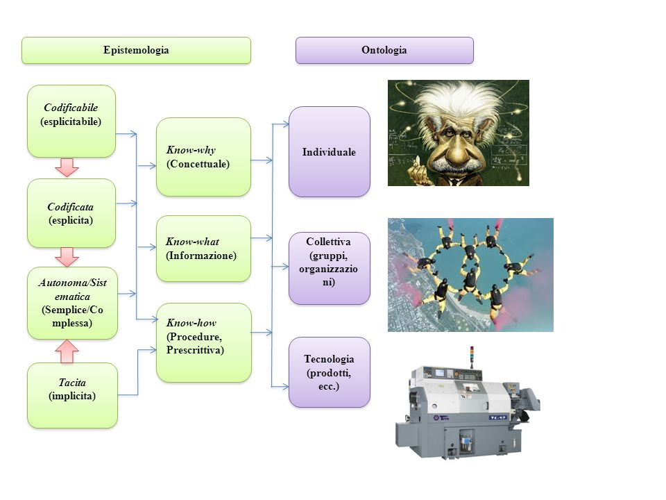 (gruppi, organizzazioni) Autonoma/Sistematica (Semplice/Complessa)