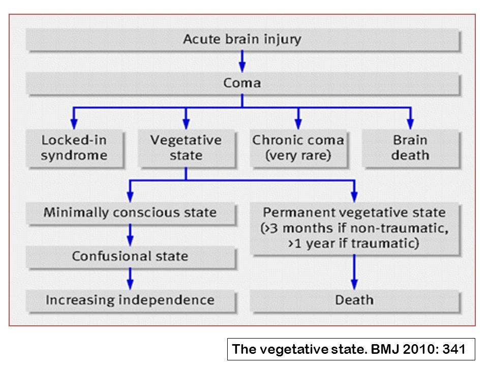 The vegetative state. BMJ 2010: 341