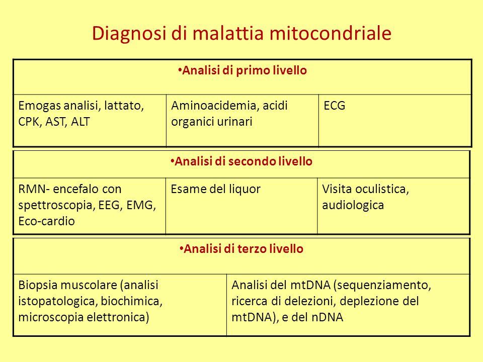 Diagnosi di malattia mitocondriale