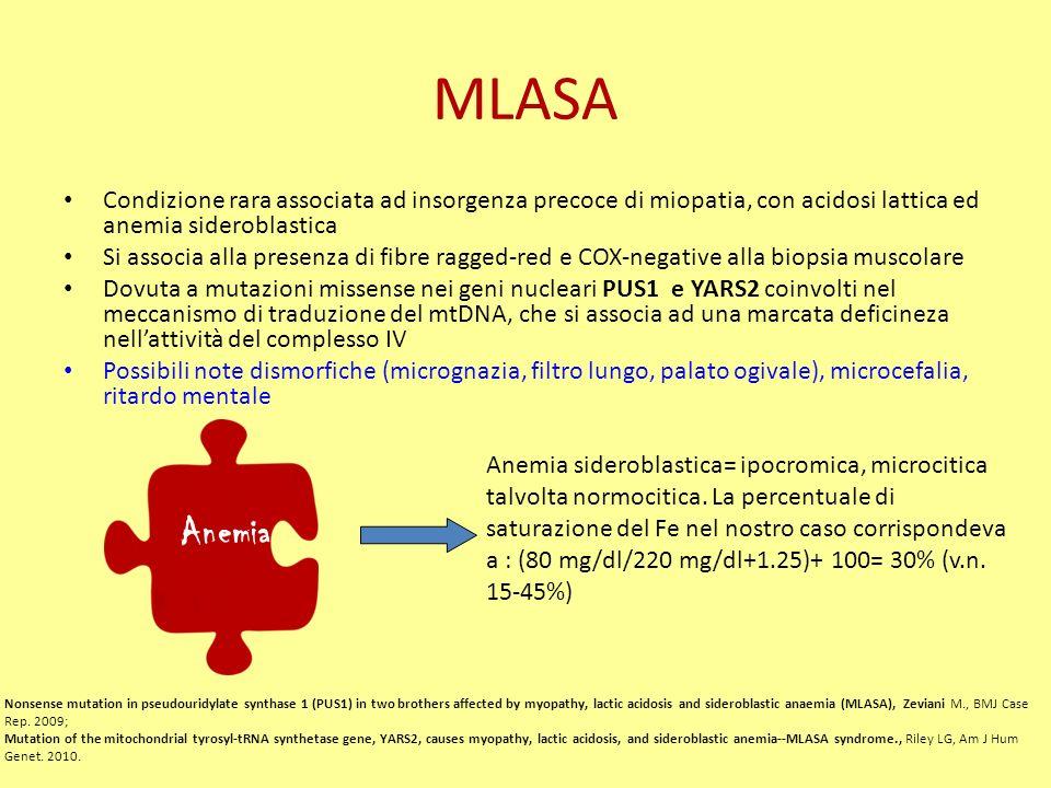 MLASA Condizione rara associata ad insorgenza precoce di miopatia, con acidosi lattica ed anemia sideroblastica.