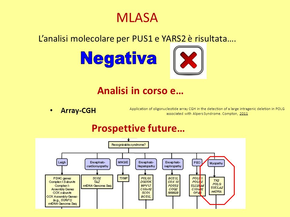 MLASA Negativa Analisi in corso e… Prospettive future…