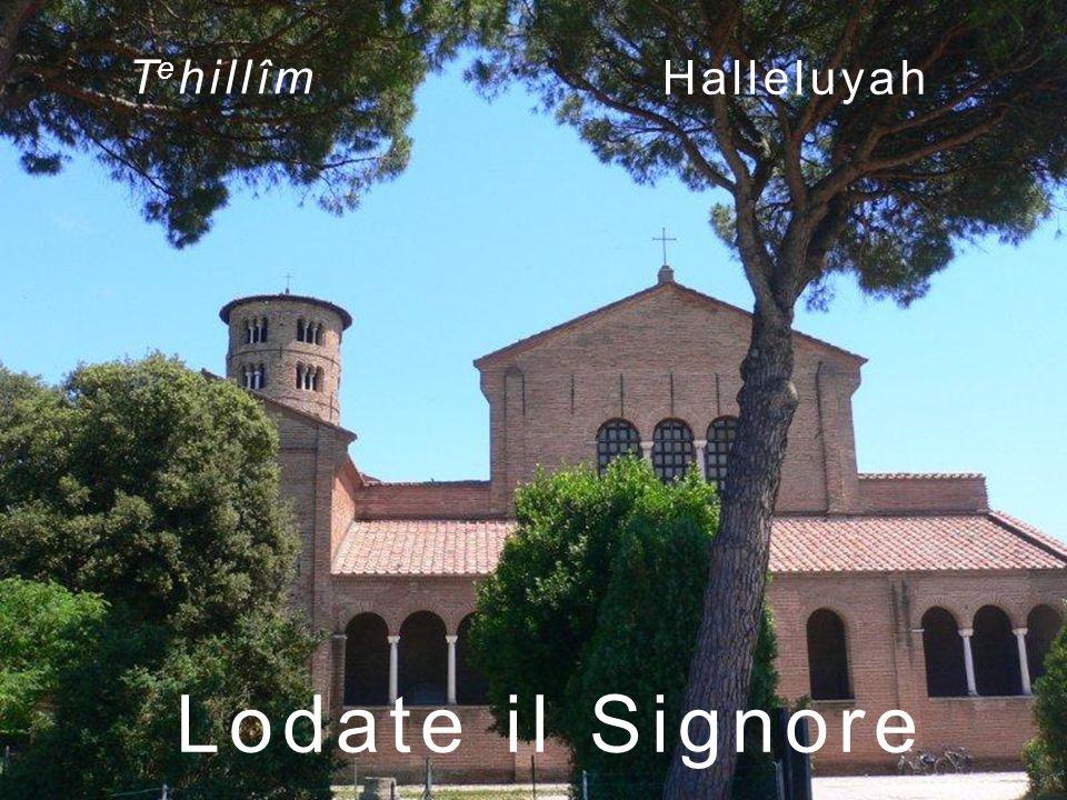 Tehillîm Halleluyah Lodate il Signore