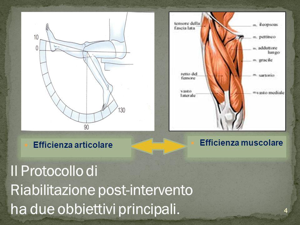 Efficienza muscolare Efficienza articolare. Protocollo Riabilitativo sia di anca che di ginocchio hanno uno svolgimento comune nelle prime giornate.