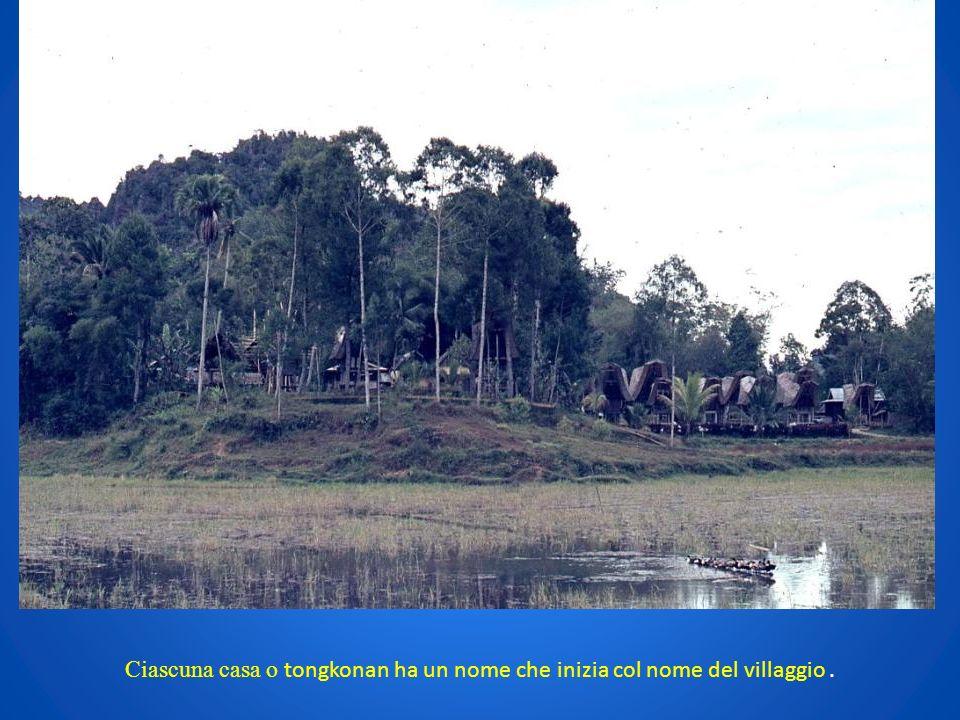 Ciascuna casa o tongkonan ha un nome che inizia col nome del villaggio .