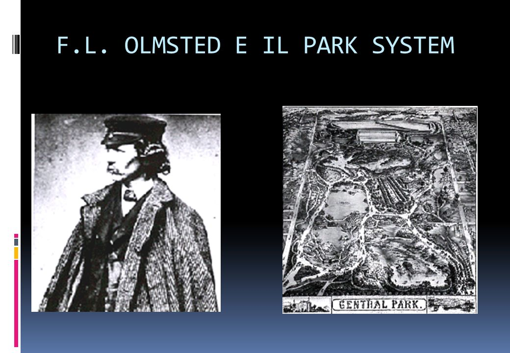 F.L. OLMSTED E IL PARK SYSTEM