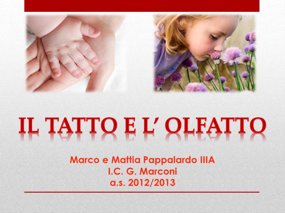 Marco e Mattia Pappalardo IIIA I.C. G. Marconi a.s. 2012/2013