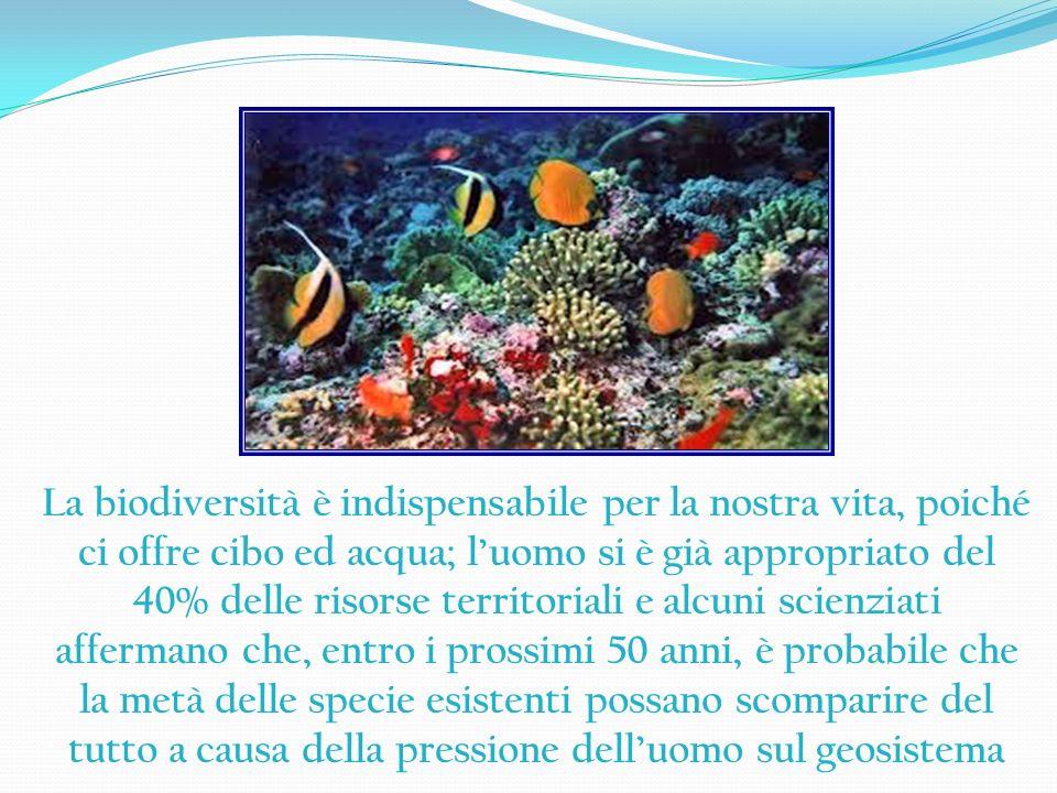La biodiversità è indispensabile per la nostra vita, poiché ci offre cibo ed acqua; l'uomo si è già appropriato del 40% delle risorse territoriali e alcuni scienziati affermano che, entro i prossimi 50 anni, è probabile che la metà delle specie esistenti possano scomparire del tutto a causa della pressione dell'uomo sul geosistema