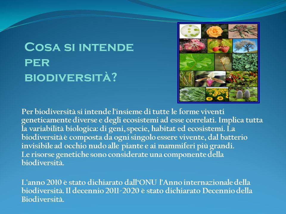 Cosa si intende per biodiversità
