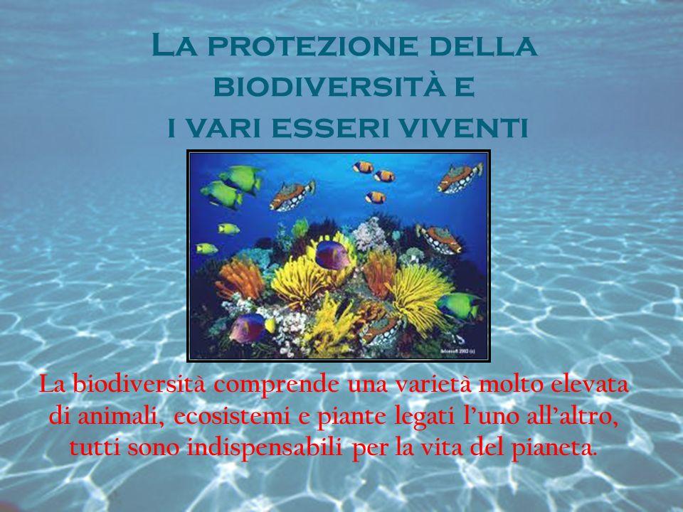 La protezione della biodiversità e i vari esseri viventi