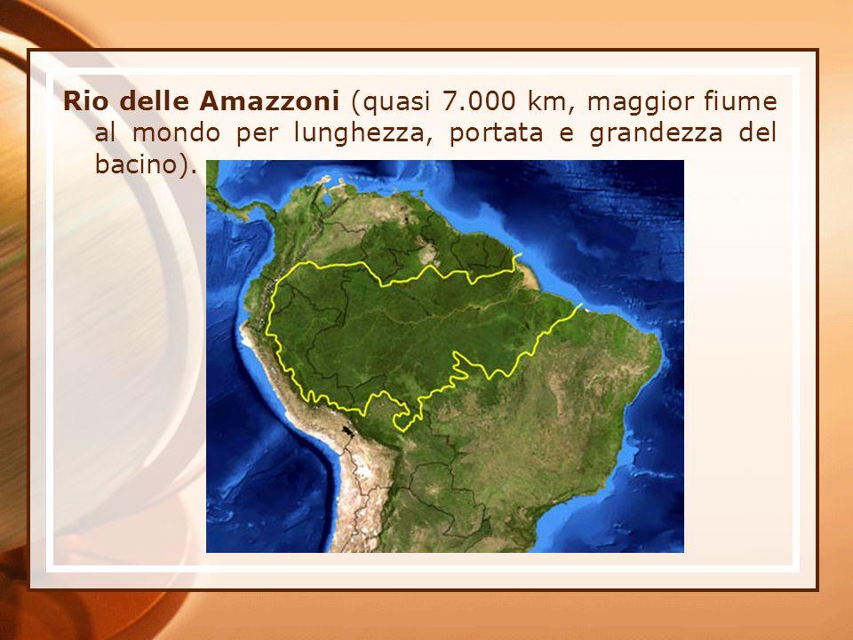 Rio delle Amazzoni (quasi 7