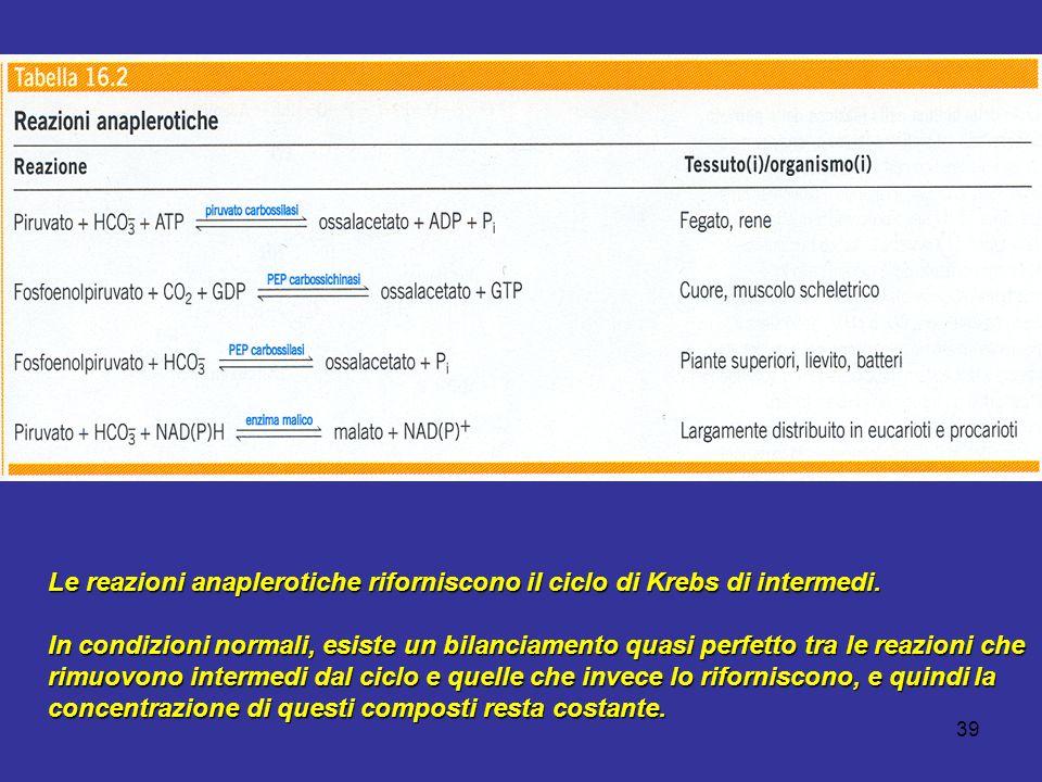 Le reazioni anaplerotiche riforniscono il ciclo di Krebs di intermedi.