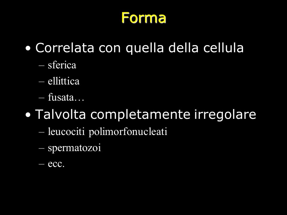 Forma Correlata con quella della cellula