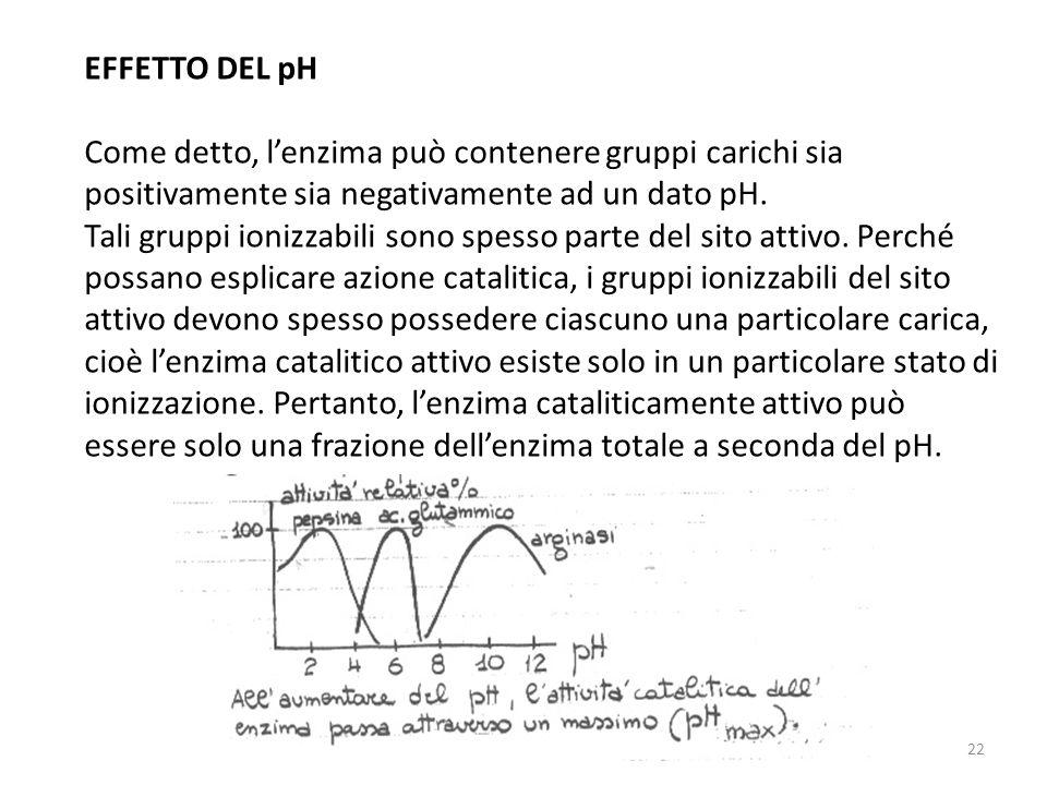 EFFETTO DEL pH Come detto, l'enzima può contenere gruppi carichi sia positivamente sia negativamente ad un dato pH.