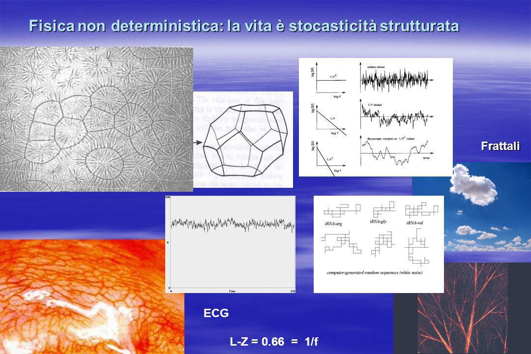 Fisica non deterministica: la vita è stocasticità strutturata