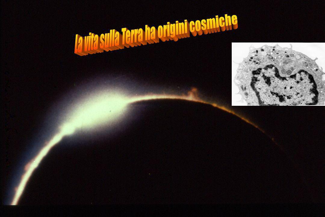 La vita sulla Terra ha origini cosmiche