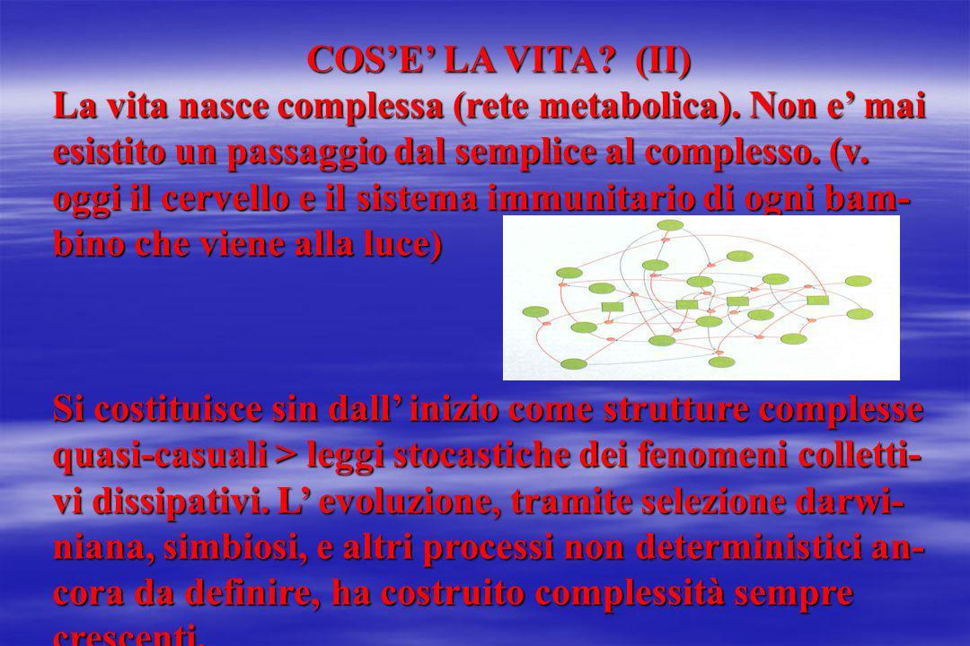 COS'E' LA VITA (II)