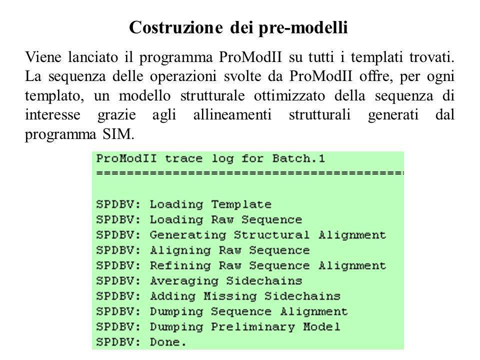 Costruzione dei pre-modelli