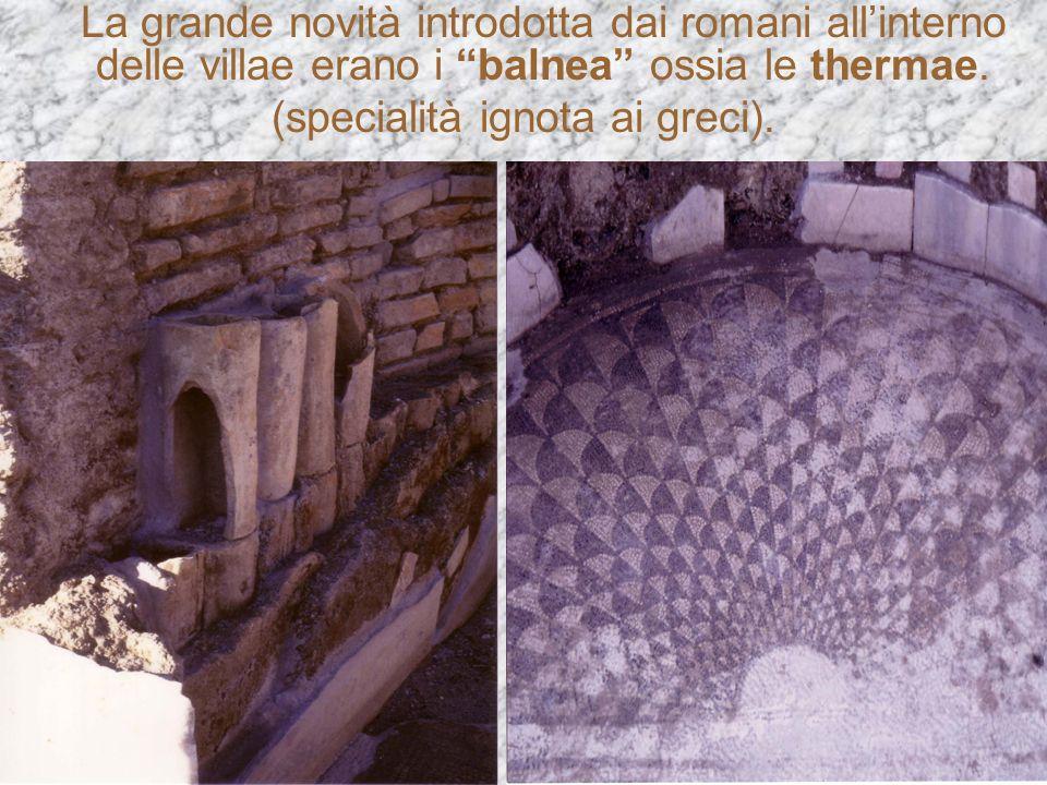 (specialità ignota ai greci).