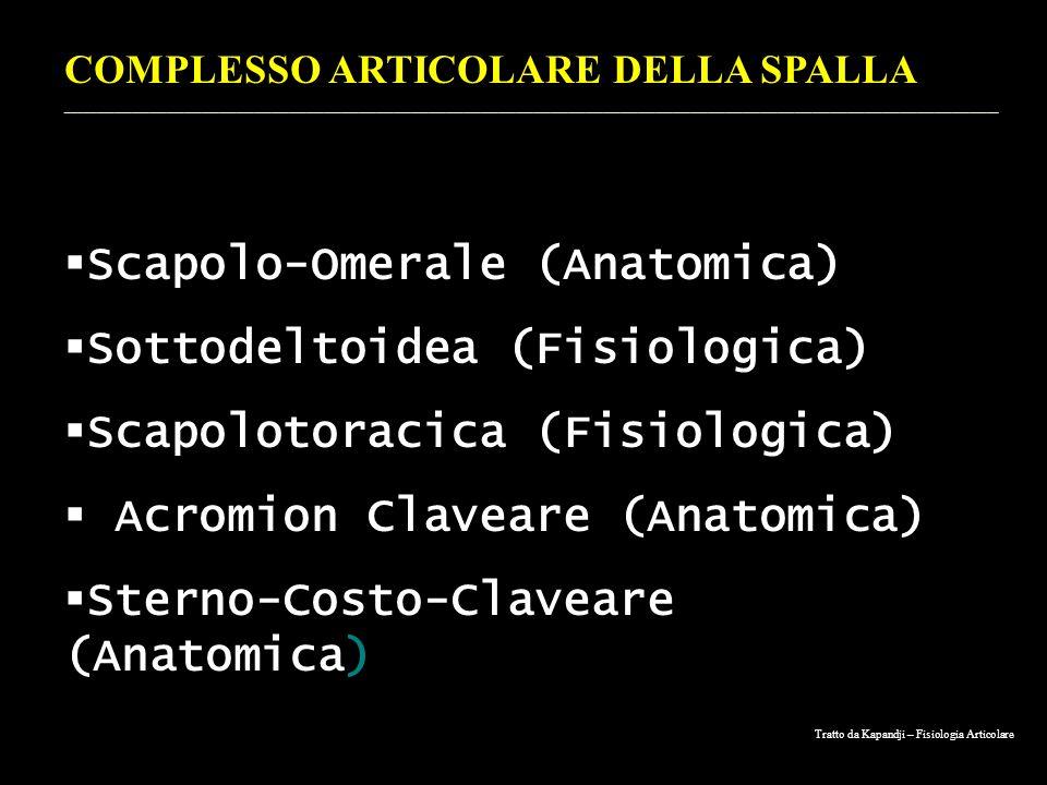 Scapolo-Omerale (Anatomica) Sottodeltoidea (Fisiologica)