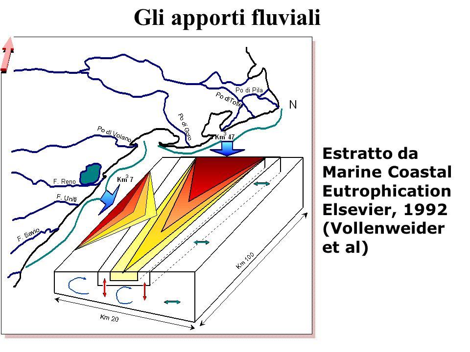 Gli apporti fluviali Estratto da Marine Coastal Eutrophication Elsevier, 1992 (Vollenweider et al)