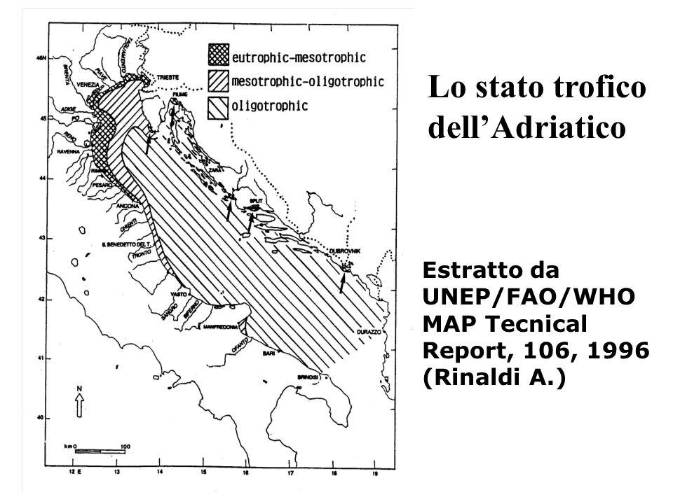Lo stato trofico dell'Adriatico