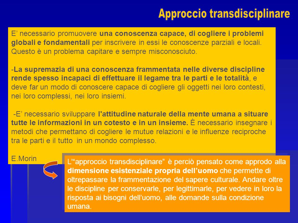 Approccio transdisciplinare