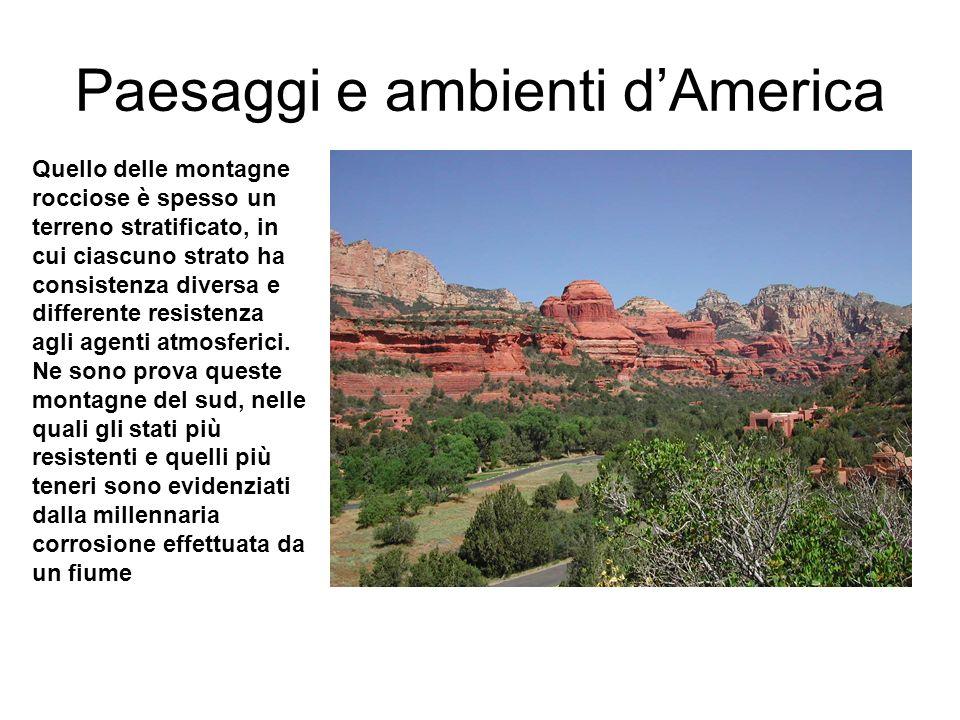 Paesaggi e ambienti d'America