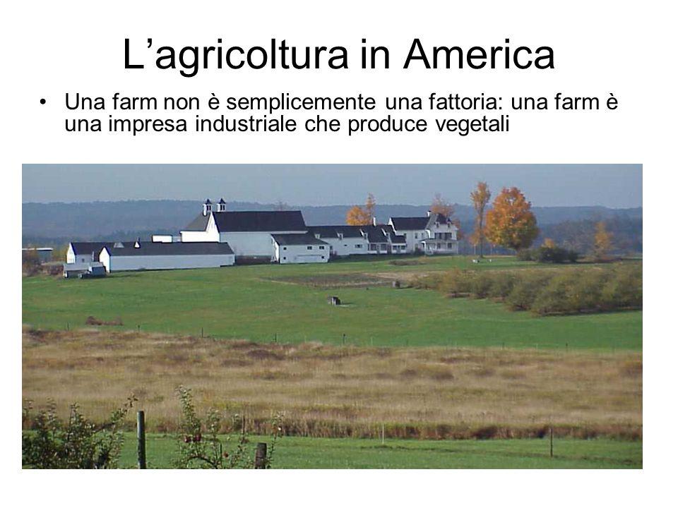 L'agricoltura in America